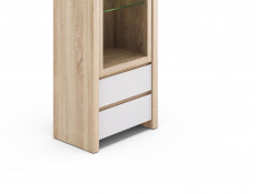 Venom Mix - Glass-Fronted Display Cabinet (REG1W2S)