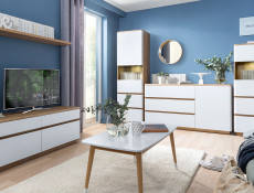 Modern 2 Door 2 Drawer TV Cabinet Entertainment Stand in White and Oak Finish- Braga (S348-RTV2S2B/DRI/BI)