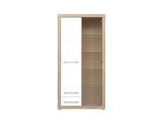 Tall Cabinet - Bigi (REG1D2S1W)
