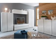 Trixo - Wall Shelf Cabinet  (SFW1K)