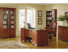 Office Furniture Set 1 - Bawaria